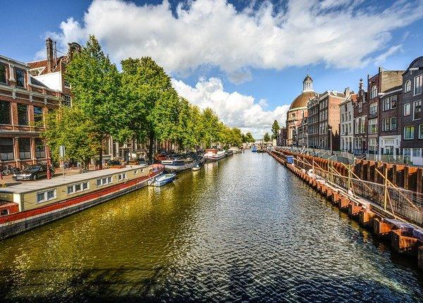 Amsterdam ongediertebestrijding dierplaagbeheersing attack