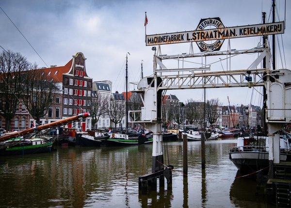 Ongediertebestrijding Dordrecht attack