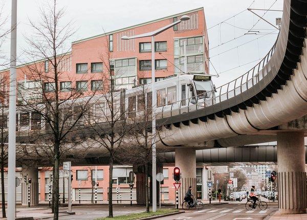 Ongediertebestrijding Den Haag