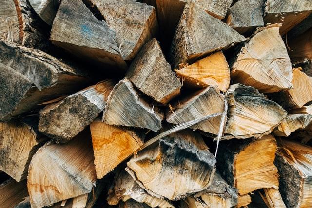 Haardhout houtworm in huis